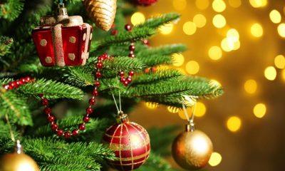 Guvernul Orban a aprobat! Bugetarii vor avea minivacanţe prelungite de Crăciun şi Revelion