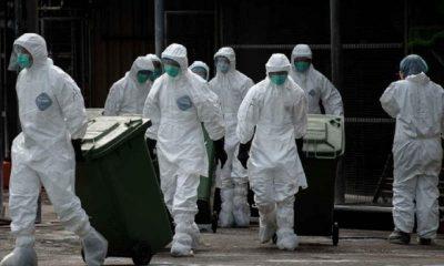 Focar de gripă aviară într-un judeţ învecinat cu Clujul