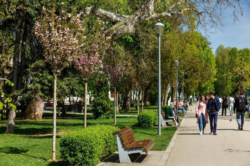 Clujul ar putea fi primul oraș din România cu manageri de parcuri