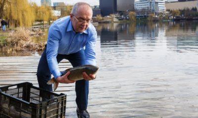 Are balta pește! Boc, cot la cot cu pescarii, la popularea lacurilor din Gheorgheni