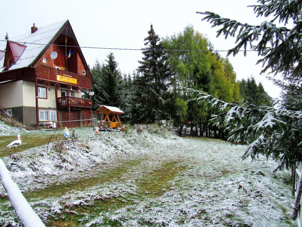 A nins la munte la Cluj