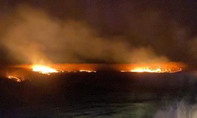 Alertă la Câmpia Turzii! Pompierii se luptă să stingă un incendiu de vegetație
