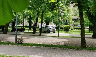 """TAXI surprins circulând prin Parcul Central: """"Într-o țară civilizată cred că rămânea și fără mașină și fără licență..."""""""