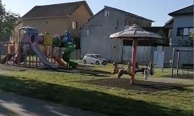 VIDEO: Șofer filmat plimbându-se cu mașina printr-un parc de joacă din Cluj-Napoca