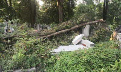 DEZASTRU in cimitirul din centru. Clujean, catre Boc: ''Nu puteti opri furtuni, dar cred ca la atata timp se putea face ordine''