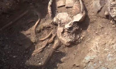Morminte vechi de 6.000 de ani și un cimitir celtic, descoperite lângă Cluj-Napoca